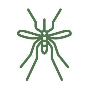 icon zanzare
